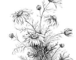 floral sketch etsy