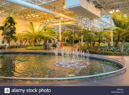 devonian gardens indoor garden park stock photos u0026 devonian
