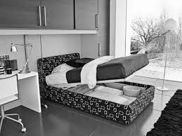 cool pull out bed storage with built in cabinet over bed as well