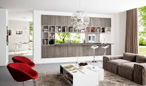 Living Room Dividers by Home Design Amazing Nice Living Room Furniture Open Bookcase