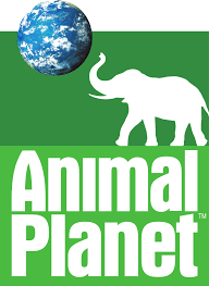 Animal Planet Picture May 2013