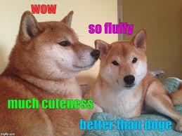 How To Make Doge Meme - doge meme generator imgflip furbabies pinterest doge meme