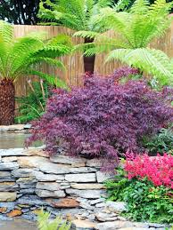 Tropical Gardening Ideas Look For One Of Our Back Corners Minus The Pond Maybe A