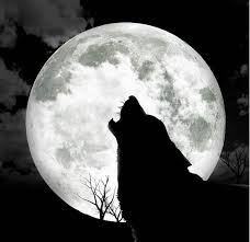 halloween full moon photography background the farm u0027s curse chapter 3 moon wolf and animal