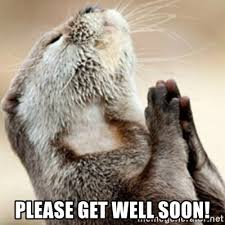 please get well soon praying otter meme generator