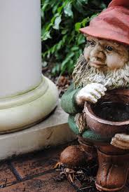 108 best garden gnomes images on pinterest garden gnomes
