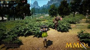 Online Resume Builder Reviews Black Desert Online Game Review