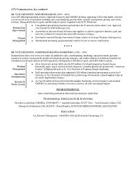 Resume Synopsis Sample by Retail Executive Resume Example