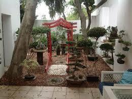 79 best bonsai display ideas images on pinterest bonsai garden