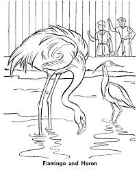 printable zoo animal coloring pages zoo birds coloring page flamingo and heron coloring zoo