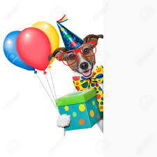 balloon dog stock photos royalty free balloon dog images and pictures