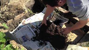 trench composting and preparing garden beds for winter alberta