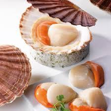 cuisine coquille st jacques gastronomie normande la coquille st jacques calvados tourisme