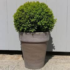 planters amazing large pots for plants large pots for plants