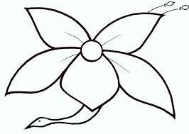 167 best zentangle templates images on pinterest draw