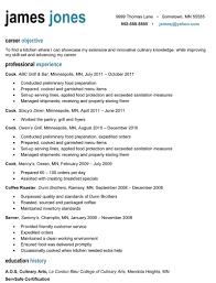 professional examples of resumes resume professional 6 licensed nurse nardellidesign com
