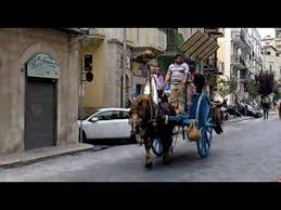 carrozze d epoca sfilata cavalli e carrozze d epoca a corato