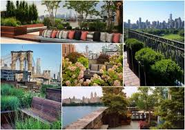 roof garden plants 5 things we learned about the rooftop gardens of new york long