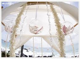 Wedding Arches Buy 32 Best Maui Wedding Arches Images On Pinterest Wedding Arches