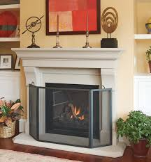 gas fireplace with screen