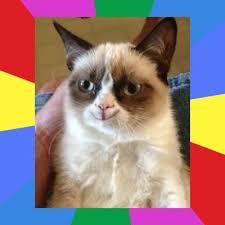 Meme Generator Grumpy Cat - grumpy cat meme generator birthday mne vse pohuj