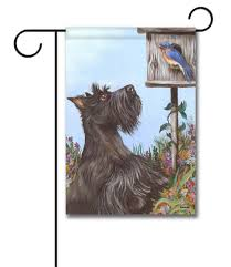 affenpinscher loyalty decorative art dog flags flagology com