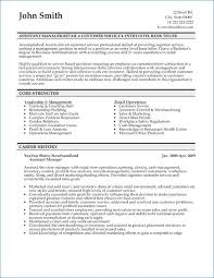 sales executive resume bank sales executive resume artemushka