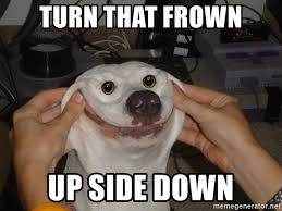 Frowning Dog Meme - turn that frown up side down forced smile dog meme generator