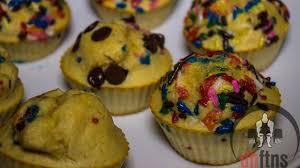 birthday cake protein muffins recipe protein recipes u0026 protein