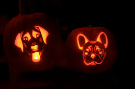 halloween pumpkin printable stencils dog pumpkin carving stencils and pics of our bailey and bam o