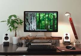 the monitor stand and the plant office pinterest monitor