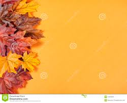 halloween background leaves autumn leaves on modern trend orange background stock photo