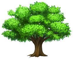 oak tree tree clipart clipart image 24892