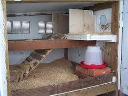 chicken coop interior photo