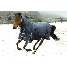Outdoor Rugs For Horses New Outdoor Rugs Horses Running In The Snow Rug Cheap