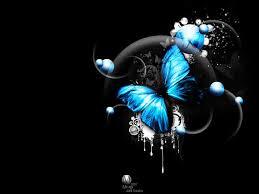 3d butterfly 3d image and piture butterflies butterflies