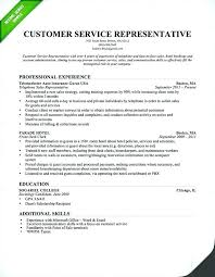 professional summary exle for resume customer service resume qualifications resume professional summary