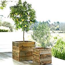 window planters indoor indoor herb garden ideas and planters easy so cute diy indoor