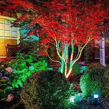multi color led landscape lighting the benefits of led landscape lighting landscape lighting