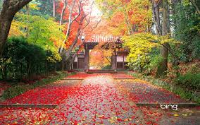 fall desktop pic autumn in japan wallpapers hd wallpapers