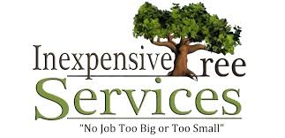 home san gabriel valley tree service tree trimming and stump