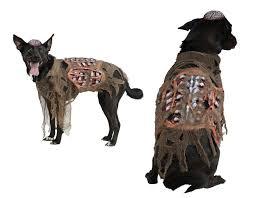 pet zombie dog halloween funny novelty walking dead animal fancy