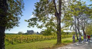Map South Of France by The Greatest Destinations In The Vineyards Of France U2013 France U0027s