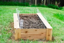 how to build a raised bed vegetable garden daily mom