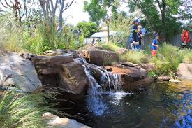 landscaping with australian native plants phillip johnson landscapes