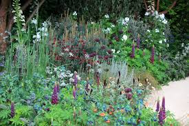 Beauty Garden by Chelsea Flower Show 2016 My Best In Show U2013 The Winton Beauty Of