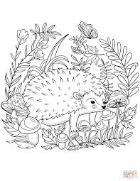 hedgehog coloring free printable coloring pages