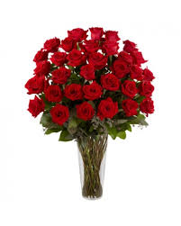 Free Vase 36 Long Stem Red Roses With Free Vase