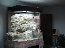 saurian enterprises inc terrarium for local st louis office space