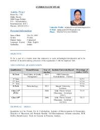How To Make Resume For Job by 28 How To Make A Resume For A Job Interview How To Write A
